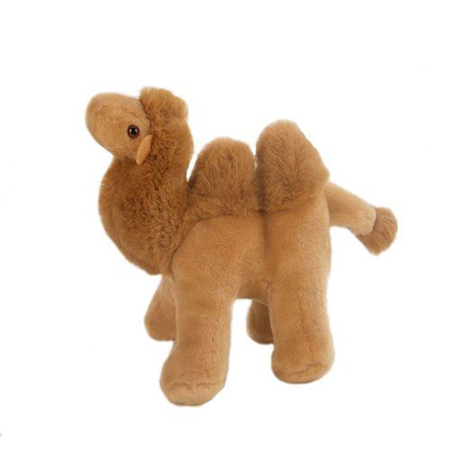 Cleo Camel